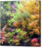 Autumn 2 - 16oct2016 Acrylic Print