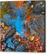 Autumn 2015 115 Acrylic Print