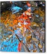 Autumn 2015 164 Acrylic Print