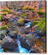 Autumn 2015 174 Acrylic Print