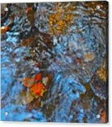 Autumn 2015 187 Acrylic Print