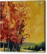 Autumn 68 Acrylic Print