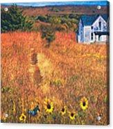 Autumn Abandoned House In The Prairie Acrylic Print
