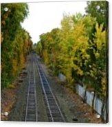 Autumn Along The Tracks Acrylic Print