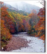 Autumn Along Williams River Acrylic Print by Thomas R Fletcher