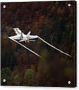 Autumn Acrylic Print by Angel  Tarantella