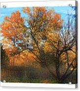Autumn At Bull Run Acrylic Print