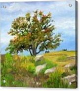Autumn At Gettysburg Acrylic Print