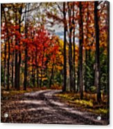 Autumn At Hickory Run Acrylic Print