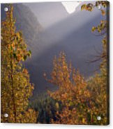 Autumn At Logan Pass Acrylic Print