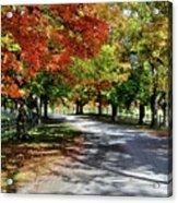 Autumn At Oatlands Lane Acrylic Print
