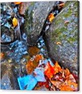 Autumn B 2015 117 Acrylic Print