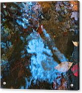 Autumn B 2015 131 Acrylic Print