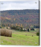 Autumn Bales Acrylic Print by Jan Amiss Photography