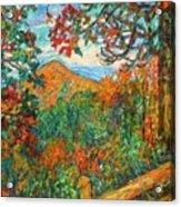 Autumn Beauty From Sharp Top Acrylic Print