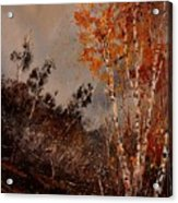 Autumn Birches  Acrylic Print