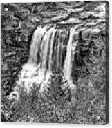 Autumn Blackwater Falls Bw Acrylic Print