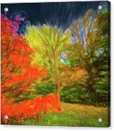 Autumn H3 Acrylic Print