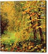 Autumn Bliss Of Color Acrylic Print
