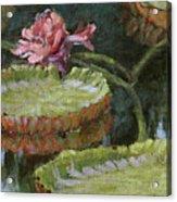 Autumn Blossom Acrylic Print