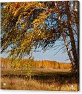 Autumn Breeze Acrylic Print