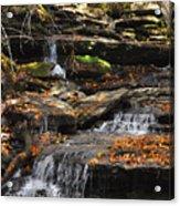 Autumn Brook Acrylic Print