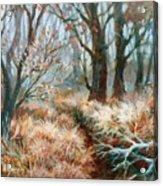 Autumn Brush Acrylic Print