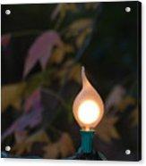 Autumn Bulb Acrylic Print