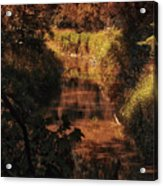 Autumn By The Argyle Creek Acrylic Print