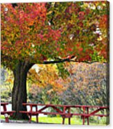 Autumn By The River On 105 Acrylic Print