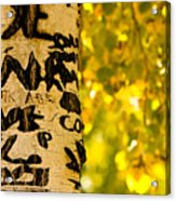 Autumn Carvings Acrylic Print