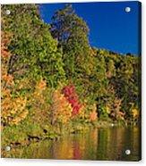 Autumn Color Trees Along Beauty Lake Acrylic Print