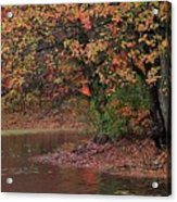 Autumn Colors By The Pond Acrylic Print