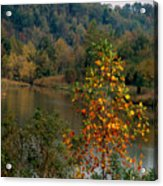 Autumn Colors Acrylic Print