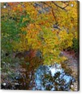 Autumn Colors Of Reflection Acrylic Print