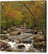 Autumn Colors On Pickle Creek 2 Acrylic Print