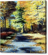 Autumn Colors Acrylic Print by Paul Walsh