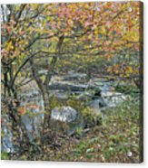 Autumn Comes To The Unami Creek Acrylic Print