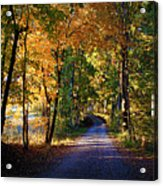 Autumn Country Lane Acrylic Print