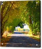Autumn Country Lane Acrylic Print