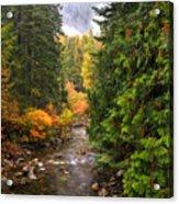 Autumn Creations Acrylic Print