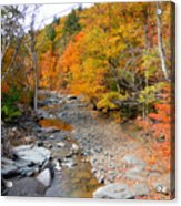 Autumn Creek 3 Acrylic Print