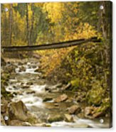 Autumn Crossing Acrylic Print