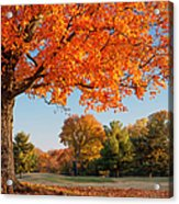 Autumn Dawn Acrylic Print