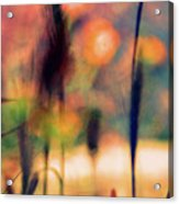 Autumn Dreams Abstract Acrylic Print