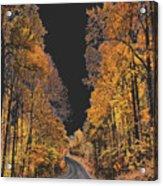 Autumn Drive 2 Acrylic Print