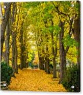 Autumn Entrance 2 Acrylic Print