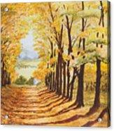 Autumn Evening Acrylic Print