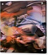 Autumn Fades Acrylic Print