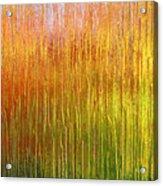 Autumn Fire Abstract Acrylic Print